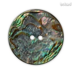 Abalone Shell Button